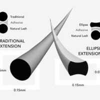 flat ellipse lash