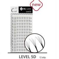 level 5d